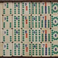 LAW 8_0324_B. Bone/Bamboo.