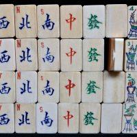 LAW 18_0655_I. Bone/Bamboo.